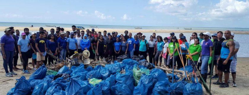Erin Beach Clean-up